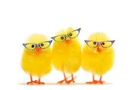 chicksinglasses